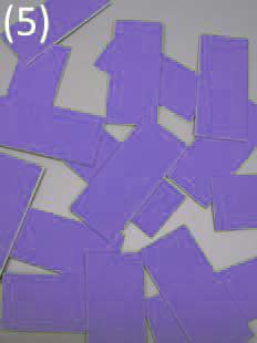 geschnitten in 16 adhäsive Chips Stoff einlagig kaschiert* auf starkem Papier (Chipgröße 4,5 cm x 2,0 cm) 20,50 €(Netto), 24,40 €(Brutto)